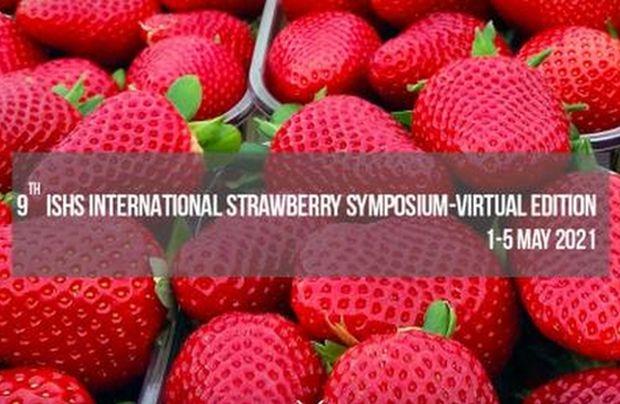 IX Międzynarodowe Sympozjum nt. Truskawek (ISS 2021) odbędzie się w formule online