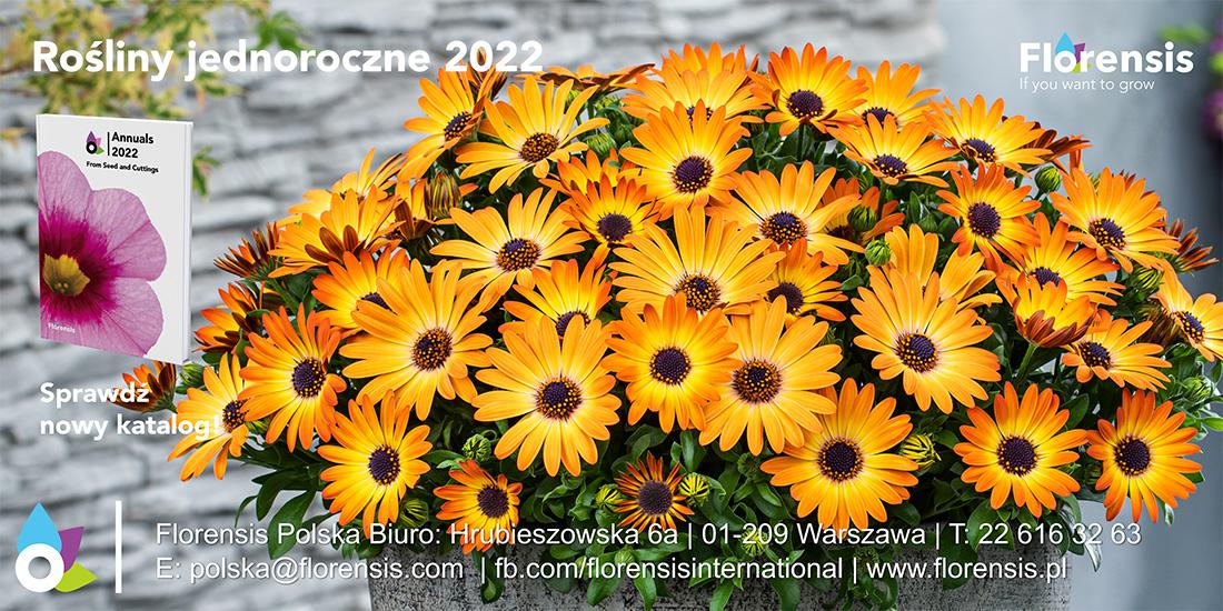 Florensis_Dianthus