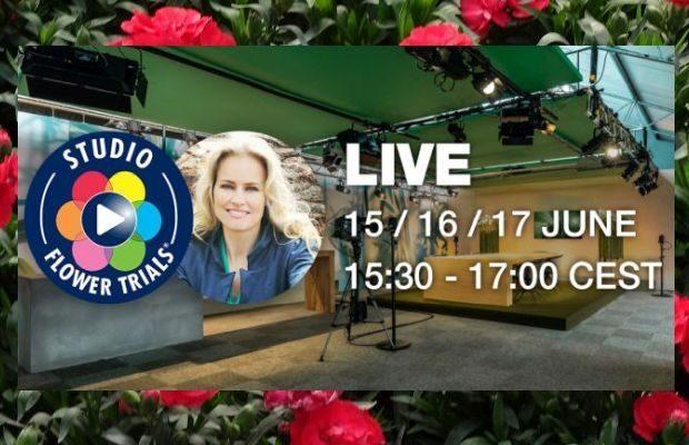 Studio FlowerTrials rozpocznie nadawanie 15 czerwca