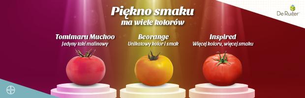 Piękno smaku ma wiele kolorów - odmiany pomidora marki De Ruiter (Tomimaru Muchoo, Beorange, Inspired)