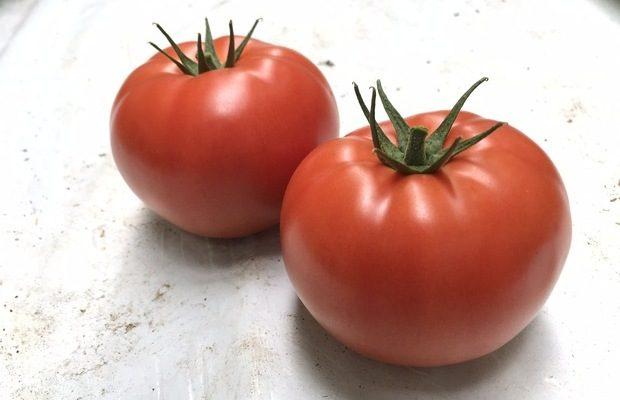 Pomidor czerwony Inspired