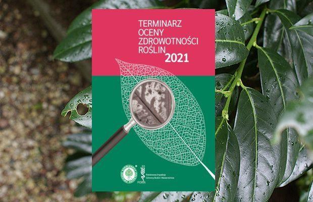 """"""" Terminarz oceny zdrowotności roślin 2021"""" powstał w wyniku współpracy Związku Szkółkarzy Polskich i Państwowej Inspekcji Ochrony Roślin i Nasiennictwa"""