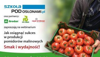 webinarium_jak osiagnac sukces w produkcji pomidorow malinowych