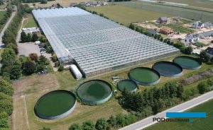 Gospodarstwo w Dachowej: szklarnie i tunel zblokowany, 2 parkingi, zbiorniki na wodę deszczową i zbiornik buforowy