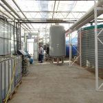 Dachowa-Ogrodnictwo-Nowaccy 2021_Zaplecze z urządzeniami do uzdatniania wody i sporządzania pożywki nawozowej (z tyłu - kotły)