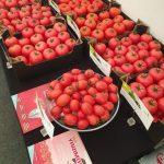 Pomidory czerwone i malinowe z aktualnego asortymentu marki De Ruiter