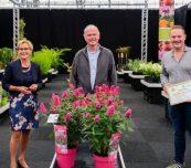 """Od lewej: Helma van der Louw (prezes KVBC), Jan de Vries (prezes SVB) i Sebastiaan van der Heijden (z certyfikatem """"Najlepsza Nowość"""") z firmy Van Son & Koot oraz budleja BUTTERFLY CANDY LITTLE RUBY, fot. SVB"""