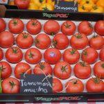 Na wystawce warzyw nie mogło zabraknąć Malinowego Króla - pomidora malinowego odmiany Tomimaru Muchoo