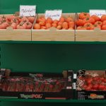 Ekspozycja owoców pomidorów została przygotowana głównie przez Grupę VegPol