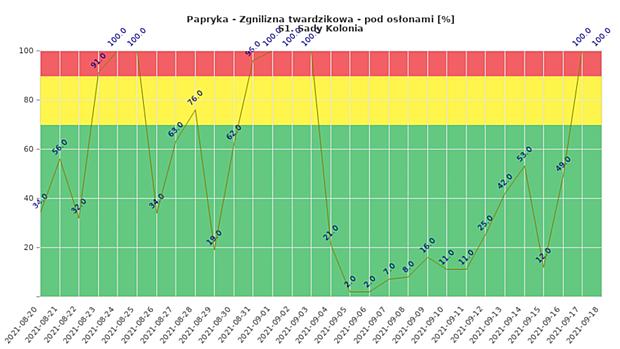 Zagrożenie rozwojem zgnilizny twardzikowej monitorowanej uprawy papryki w tunelach (dane od 20 sierpnia do 18 września, Sady Kolonia)