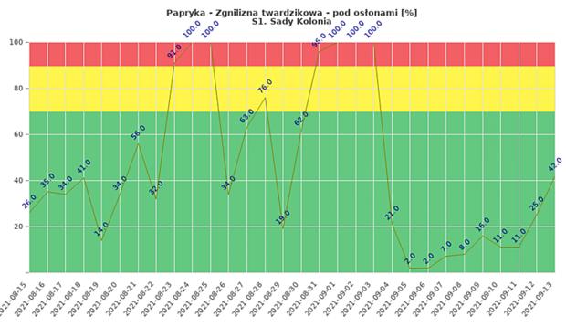 Zgnilizna twardzikowa na monitorowanej plantacji papryki w miejscowości Sady Kolonia - zagrożenie infekcją w okresie od 15 sierpnia do 13 września 2021