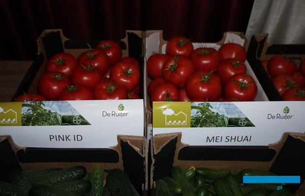 Pomidory odmian Pink ID i Mei Shuai