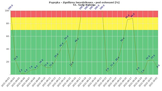 Zagrożenie roślin papryki zgnilizną twardzikową (wrzesień 2021, uprawa tunelowa w m. Sady Kolonia)