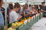 Wystawa z owocami odmian papryki oferowanymi przez Monsanto