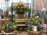 Kompozycja roślin kwitnących wiosną i latem