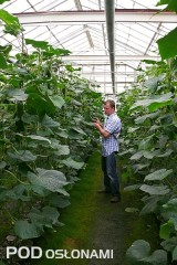 Tomasz Marasik doradza w prowadzeniu uprawy