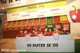 Ekspozycja odmian De Ruiter Seeds w Gołuchowie