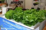 Prezentacja Dry Hydroponics w Gołuchowie