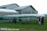 Obok siedziby firmy Metazet przygotowano demonstracyjną plantację truskawek na rynnach pod daszkami