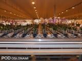 Hala dystrybucji, w której funkcjonuje Plant Ordering System